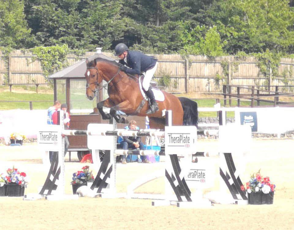Checkmate I Z - International Showjumper