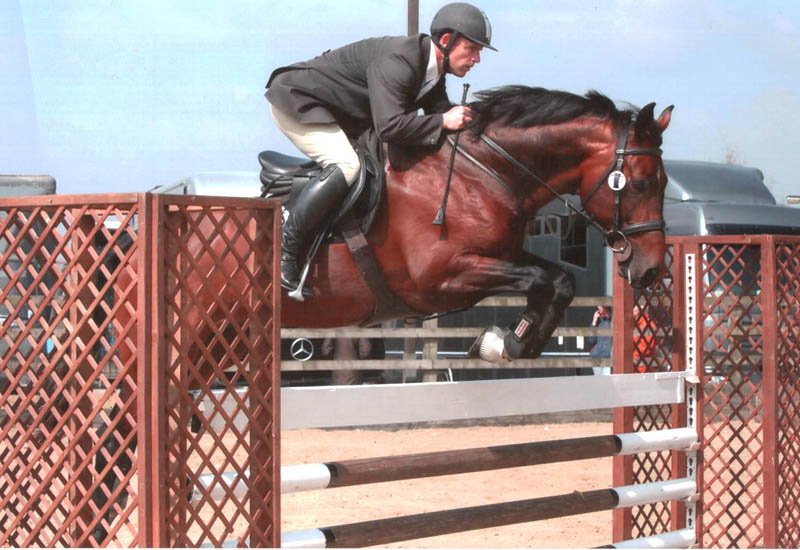 Robert Bevis - Showjumper