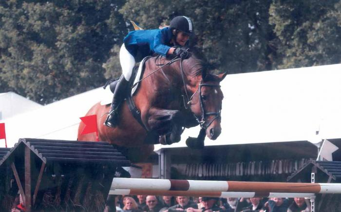 Showjumper - Coriano Z