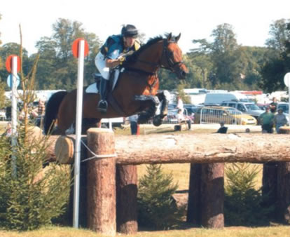 Trakehner Eventer