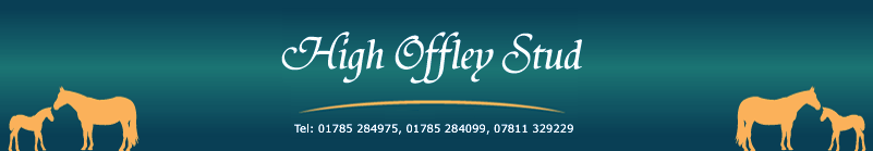 At High Offley Stud we breed and produce sports horses of the highest quality that can compete in any equestrianism sphere show jumping, dressage & eventing.