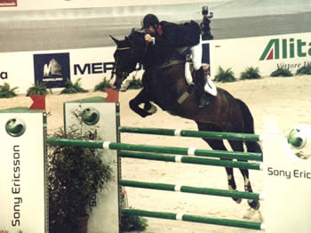 Handel II Showjumping stallion & Michael Whitaker