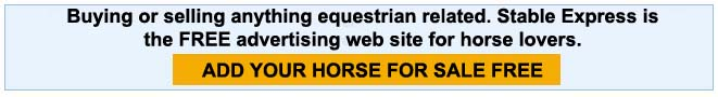 Sell Horse Online