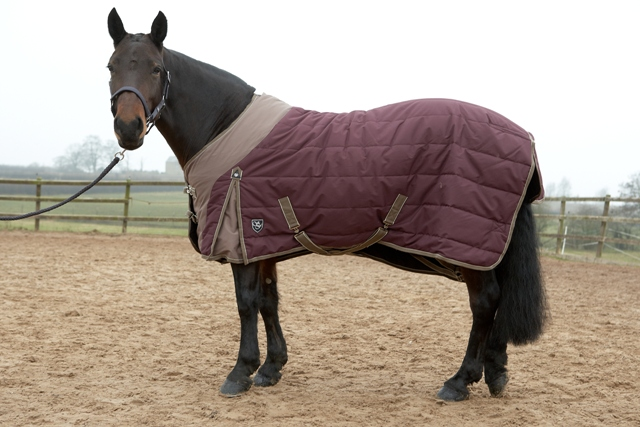 Stable Rugs Australia Forest Ascot Stable Rug