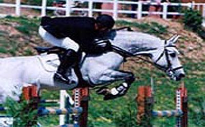 Show Jumping Shows