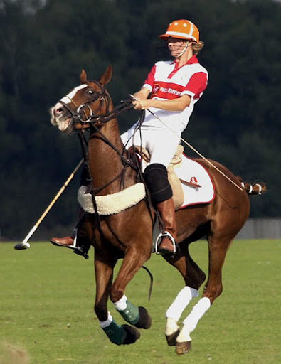 Tarquin Southwell Polo Player