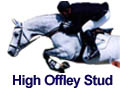 Breeding Stallions - High Offley Stud